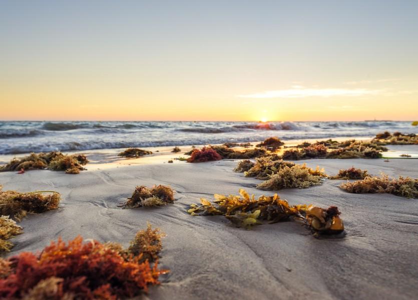 Atardecer en la playa de La Victoria